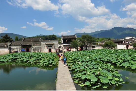 宏村古村落探秘:青山绿水中的黑瓦白墙