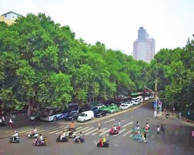 郑州创建国家生态园林城市 人均公园绿地达到1